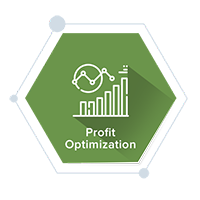 Profit Optimization